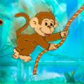 调皮小猴子