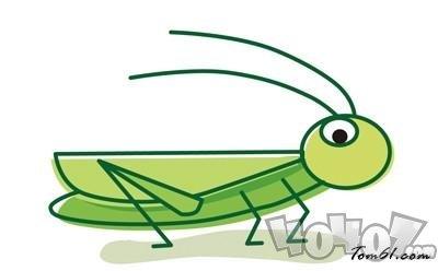 蝗虫集体出动时整整齐齐,路线一致,这是为了 蚂蚁庄园每日一题5月20日答案