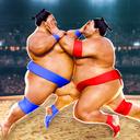相扑摔跤手2020