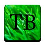 TinyBit启动器